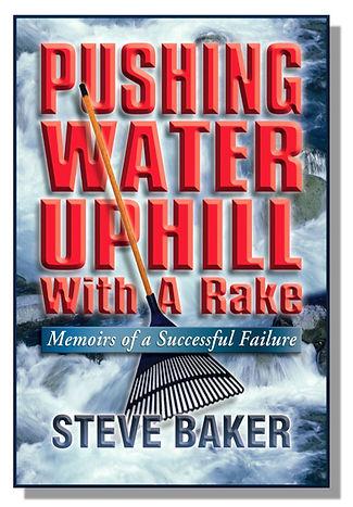 Pushing Water Uphill With A Rake, award winning business story