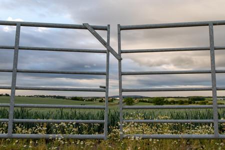 Field Through A Gate