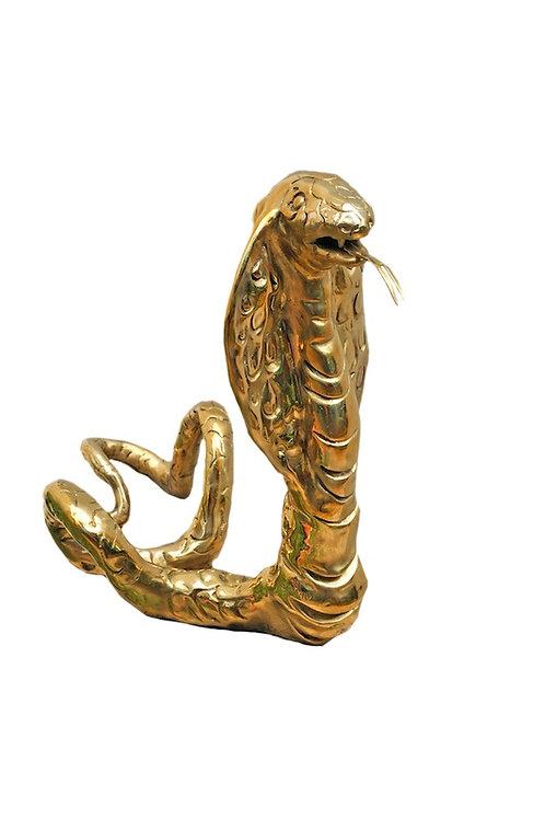 """Cobra Royal"""