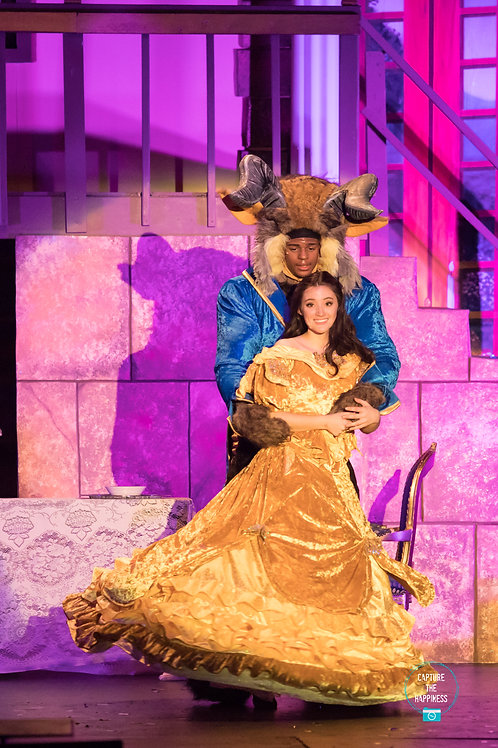 Beauty And The Beast - Show Pictures / Video DVD Combo