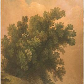 """Anonyme """"Branche d'arbre"""""""