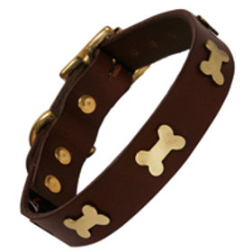 Brown Leather Collar with Brass Bones