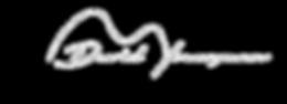 David_Youngman_Logo1.png