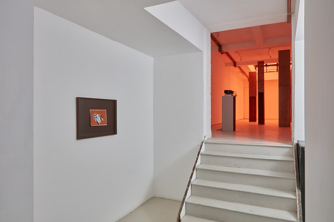 Installation image from ANDOR, 2016