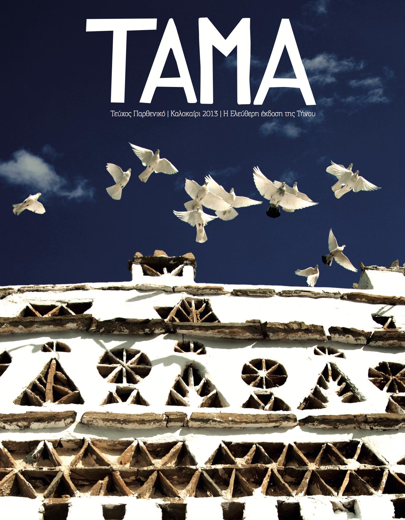 TAMA 2013