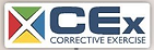 CEX logo.png