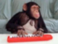 piano-monkey.jpg