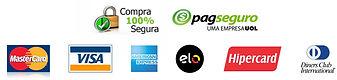 Logos-Cartões-de-Crédito-com-Logo-Pagseg