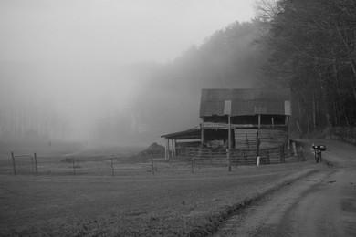 Valley Mornings