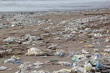 plastic waste beach wormify.jpg