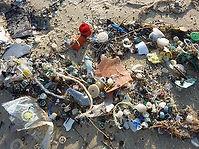 plastic rubbish beach wormify.jpg