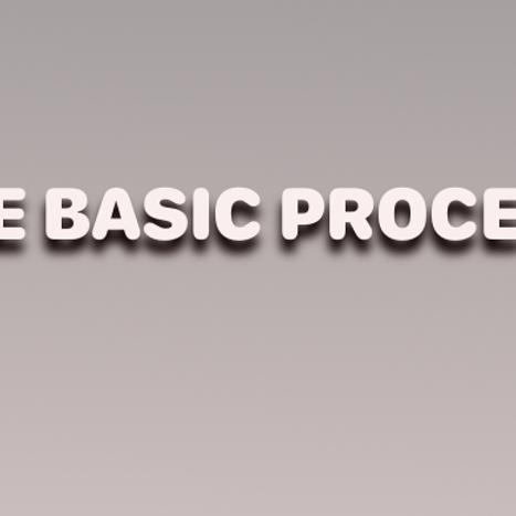 THE BASIC PROCESS  DVD