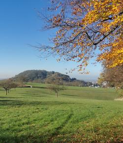 Odenwald - Bensheim