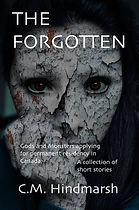 forgotten preview cover 1 6x9 bleed.jpeg