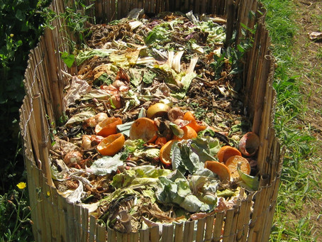 Comparing composting around the Hills