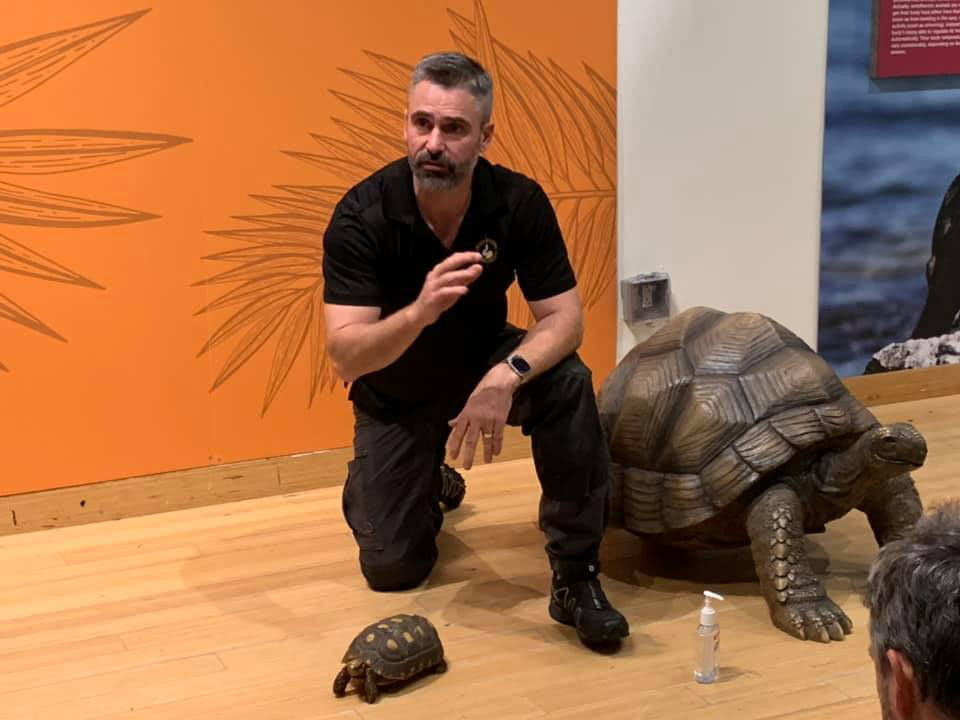 "Little Ray's Nature Centre founder and CEO Paul ""Little Ray"" Goulet, seen here with a red footed tortoise while giving a presentation at the Brooklyn Children's Museum in February 2020, lives in Chelsea and has spent the last 26 years rescuing, rehabilitating and caring for or rehoming exotic animals across Canada. He says it could all come to an end this year because of COVID-19 and the lack of government support. Photo courtesy Little Ray's Nature Centre"