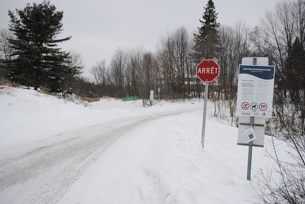 The municipality of Chelsea, through an online public consultation, is asking for input on possible future locations of river access sites including here, near Chemin Kirk's Ferry and the community trail. Hunter Cresswell photo
