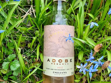 Spring is Rosé Time!  Adobe Reserva Organic Rosé 2020