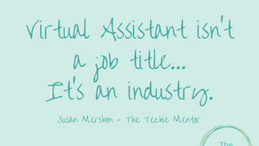 Virtual Assistant isn't a job title, it's an industry
