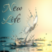 New Life - COVER