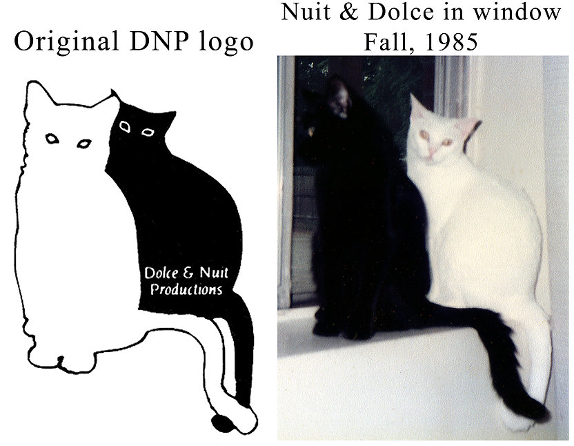 Dolce & Nuit sitting in a window