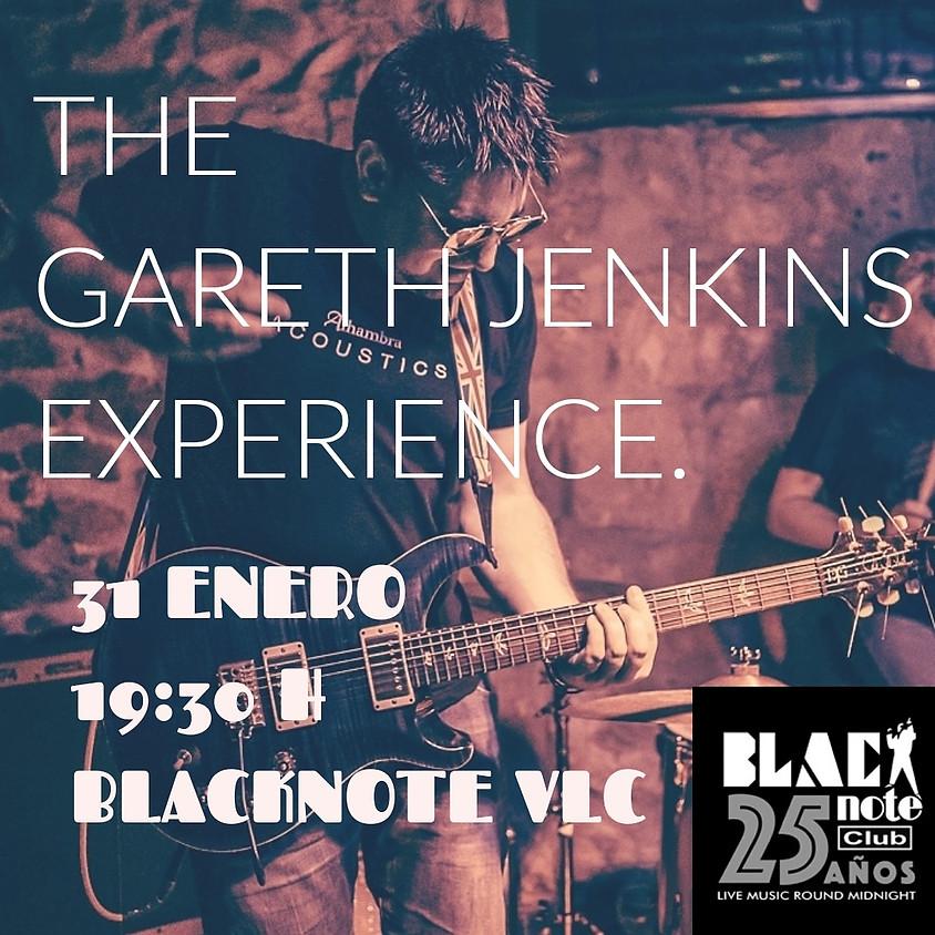 THE GARETH JENKINS EXPERIENCE