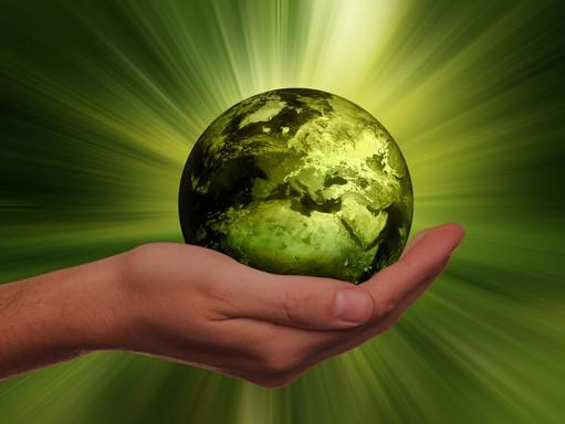 S'informer de l'actualité écologique !