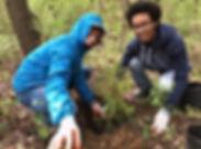 Deisha_Donald tree pgh.JPG