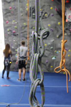 climbers in a gym
