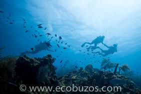Ecobuzos Los Roques 31.jpg