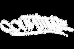 Countime Logo