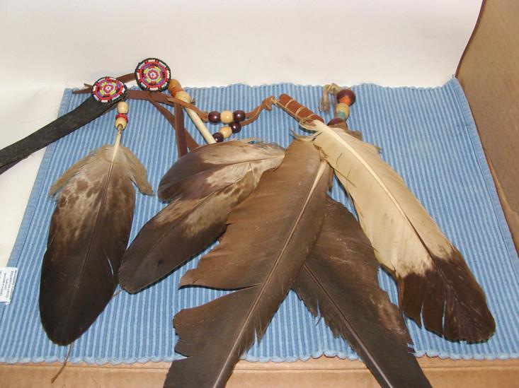 Eagle feathers.JPG