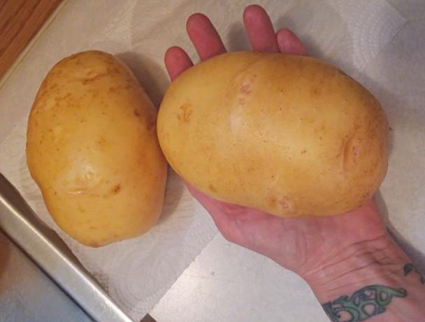giantpotatoes10sept2019-768x576.jpg