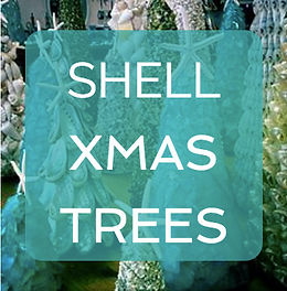 Email Sheila Ward about Shell XMas Trees