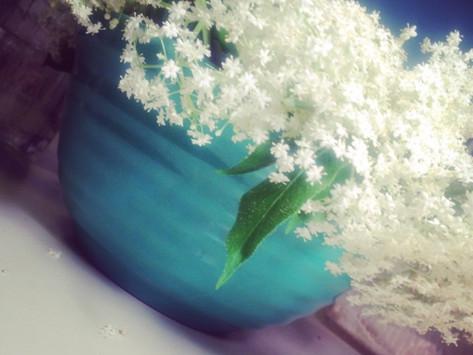 Elderflower Goodness