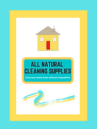 5 Natural Home Cleaners PDF