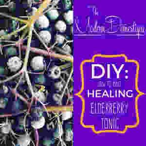 DIY Healing Elderberry Tonic