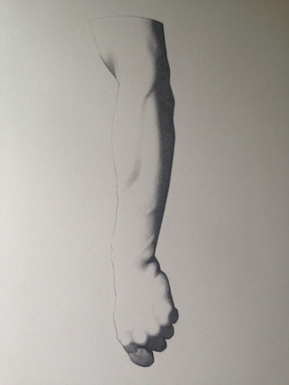 Study of arm ( Charles Brague)