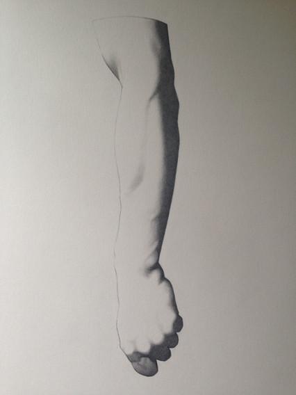 Étude d'un bras ( Charles Brague)