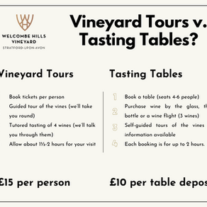 A Guide to Vineyard Tours & Tasting Tables