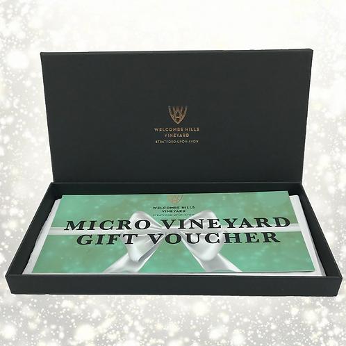 Micro Vineyard Gift Box - 1 Vine