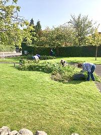 Saturday Gardening.JPG