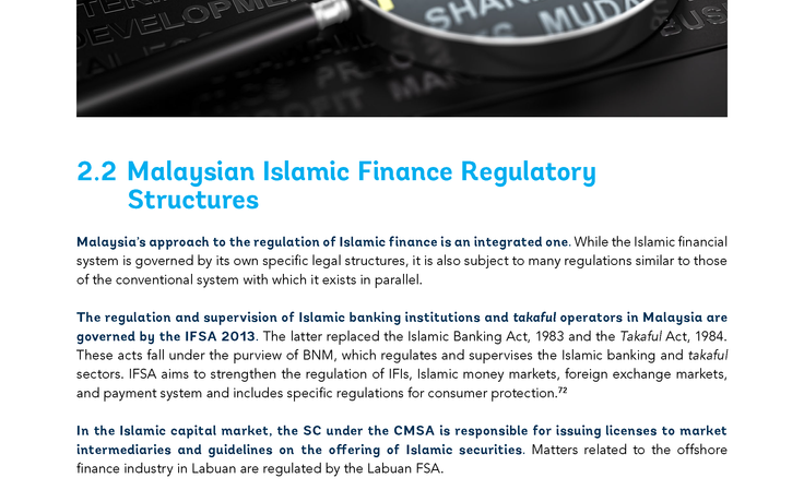 World Bank: Islamic Finance & Financial Inclusiveness (Inside Sample 1)