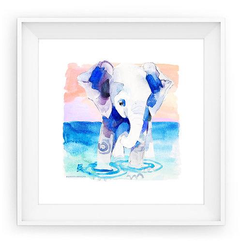 ELEPHANT | fine art print