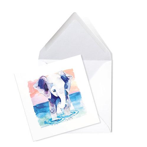 ELEPHANT   x50 printed cards (14 x 14cms)