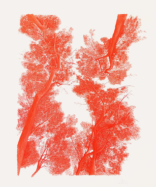 Turó de la Peira vermell