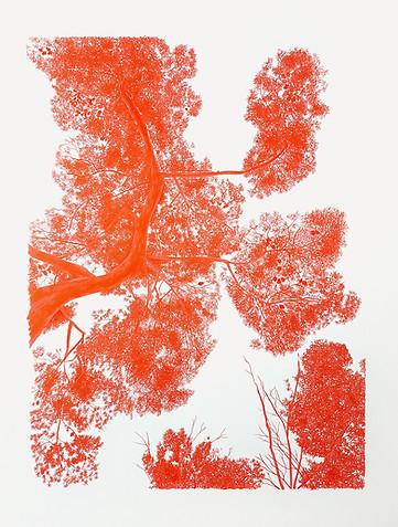 Pinyoner vermell
