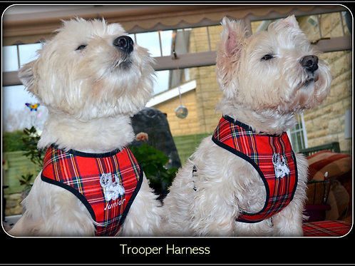 TARTAN TROOPER HARNESS - PLAIN, BOW TIE OR EMBROIDERED OPTIONS