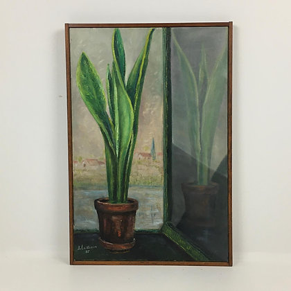 Sansevieria on canvas