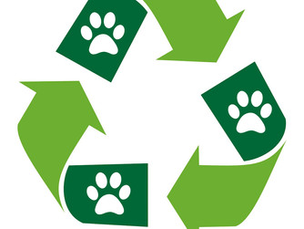 Recycling at IMHS